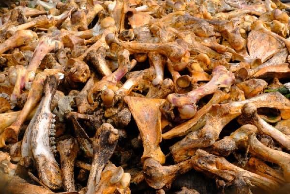 Сырье для производства костной муки