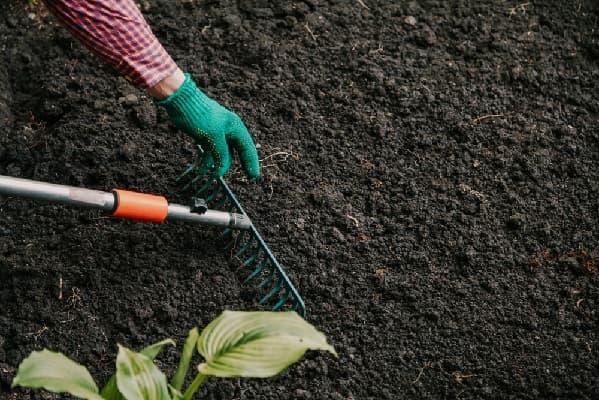 Обработка земли в саду