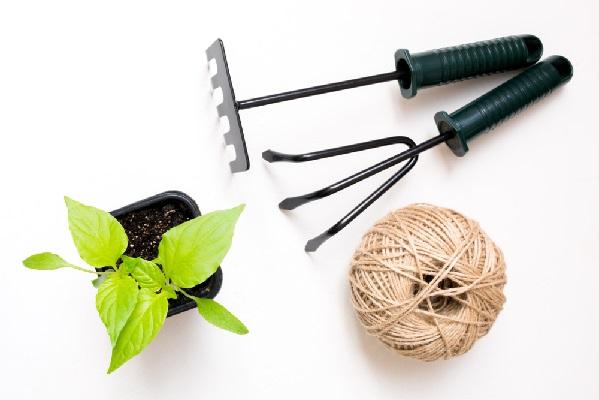 Инструменты для посадки овощей