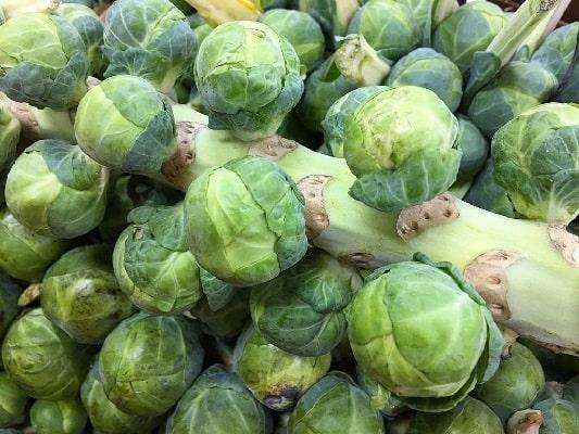 Современные гибриды брюссельской капусты