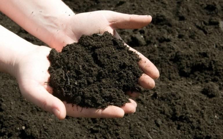 почва на участке