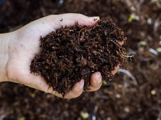 внесение комплексных удобрений в саду